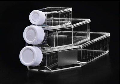 Celcultuurfles 75 cm² met filter
